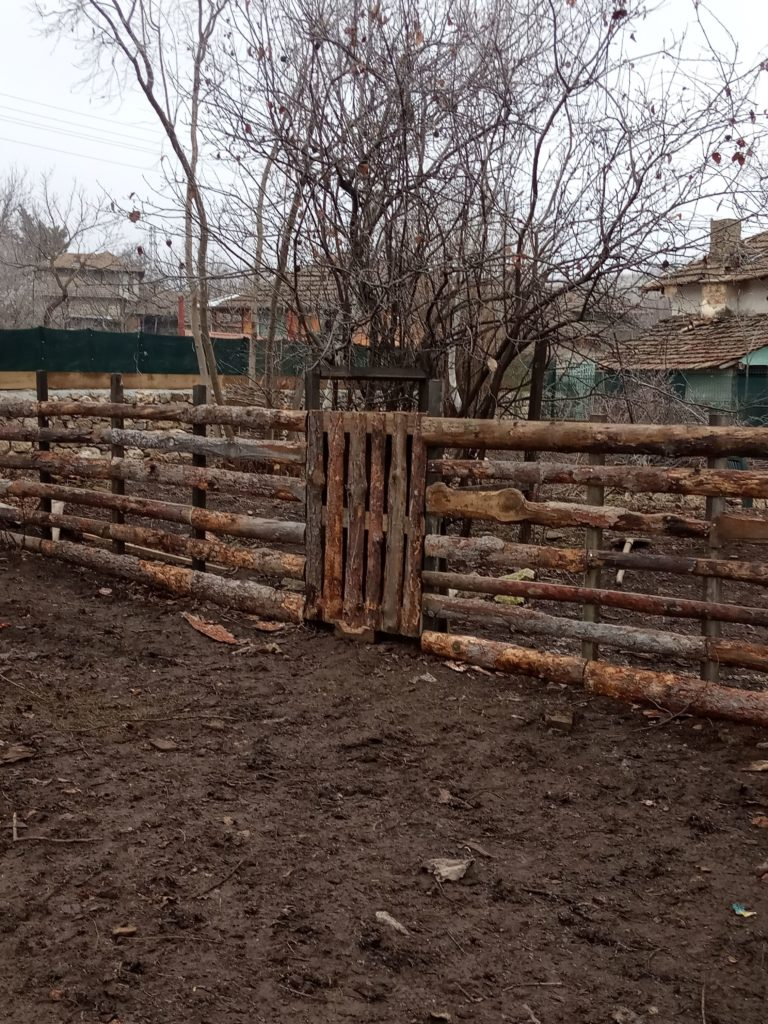 The new little fence
